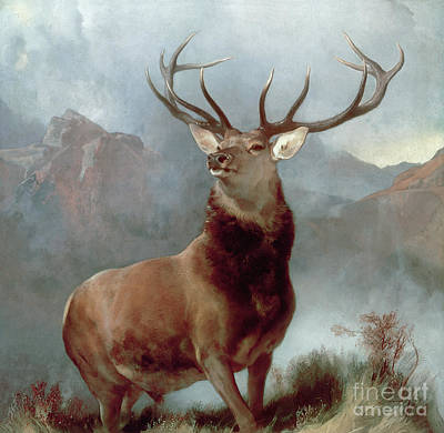 Oil Landscape Painting - Monarch Of The Glen by Sir Edwin Landseer