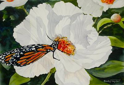 Painting - Monarch On A Poppy by Becky Taylor