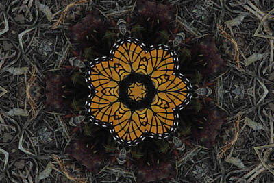 Photograph - Monarch On Peach Kaleidoscope by Robyn Stacey
