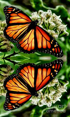 Photograph - Monarch Reflection by Robert ONeil