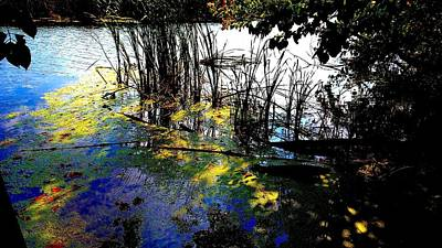Monet Ice Age Pond Art Print