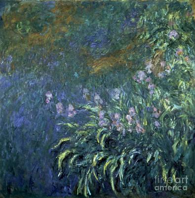 Monet: Irises By The Pond Print by Granger