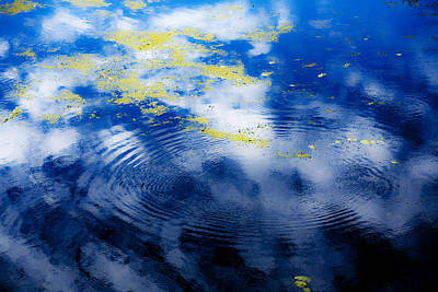 Photograph - Monet Like Water by Marilyn Hunt
