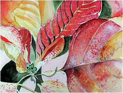 Drawing - Monet Poinsettia by Mindy Newman