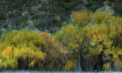Photograph - Monet's Autumn by Sue Cullumber