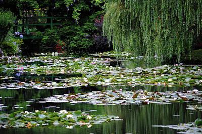 Photograph - Monet's Garden by Robert Moss