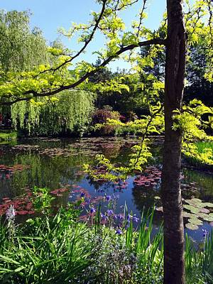 Photograph - Monet's Pond by Gordon Beck