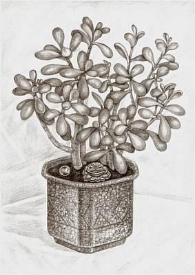 Houseplants Drawing - Money Tree And The Frog-guardian by Lyudmila Khudiakova