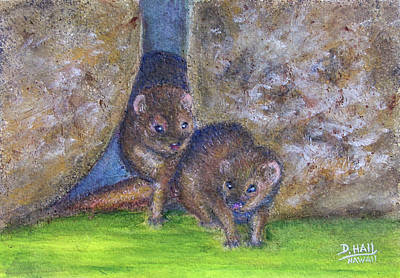 Mongoose #511 Art Print by Donald k Hall