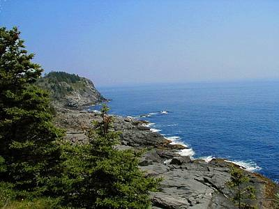 Photograph - Monhegan by T Guy Spencer