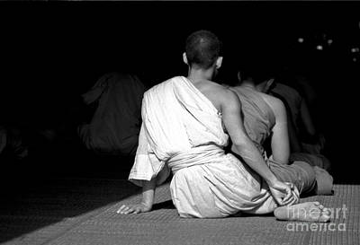 Photograph - Monk by Mary-Lee Sanders
