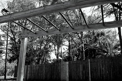 Photograph - Monkey Bars by Debra Forand