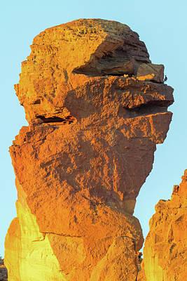 Photograph - Monkey Face Pillar At Smith Rock Closeup by David Gn
