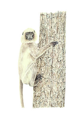 Painting - Monkey In The Tree by Elizabeth Lock
