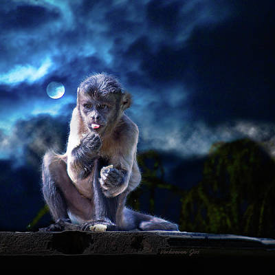 Digital Art - Monkey by Jos Verhoeven
