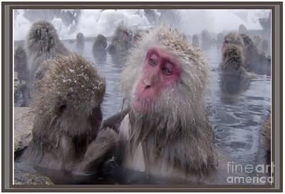 Ancestor Art Mixed Media - Monkey Leisure Time by Navin Joshi