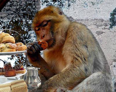 Moroccan Digital Art - Monkey Tea Party by Jan Steadman-Jackson