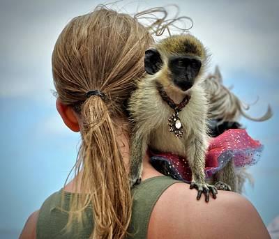 Photograph - Monkeying Around by Cornelia DeDona