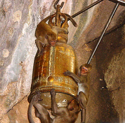 Photograph - Monkeys On Bell by Judi Saunders