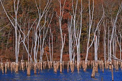 Photograph - Monksville Reservoir 5 by Allen Beatty