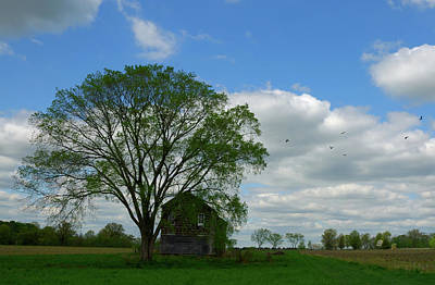 Print featuring the photograph Monmouth Battlefield by Steven Richman
