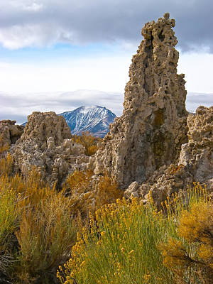 Photograph - Mono Lake California by Waterdancer