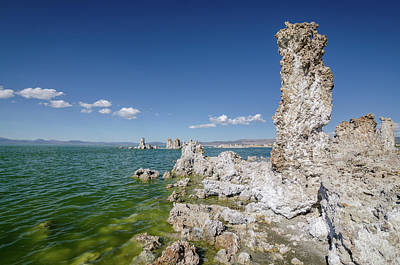 Photograph - Mono Lake No.1 by Margaret Pitcher