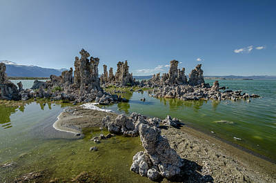 Photograph - Mono Lake No.3 by Margaret Pitcher