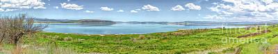 Photograph - Mono Lake Panorama by Joe Lach