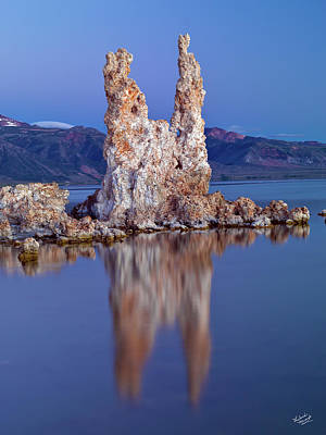 Photograph - Mono Lake Tooth by Leland D Howard