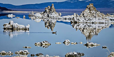 Photograph - Mono Lake Tufa by Albert Seger