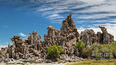 Photograph - Mono Lake Tufa by Brandon Bonafede