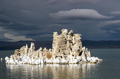 Photograph - Mono Lake by Waterdancer