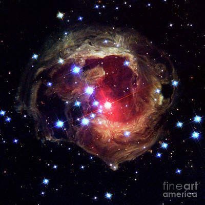 Monocerotis, Red Variable Star, Astronomy, Space Art Print by Tina Lavoie