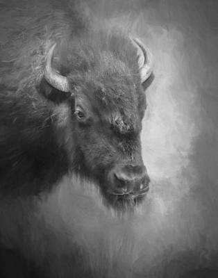 Photograph - Monochrome Bison by David and Carol Kelly