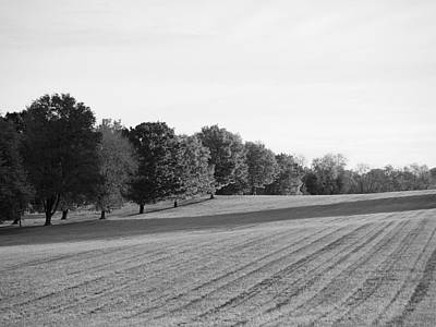 Photograph - Monochrome Fall by Richard Reeve