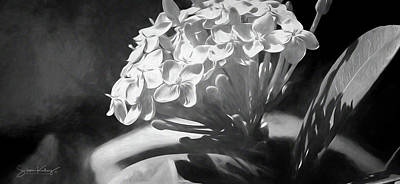 Digital Art - Monochrome Flora by Steve Kelley