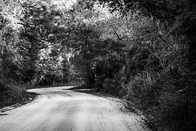Photograph - Monochrome Jungle Path by Shelby Young