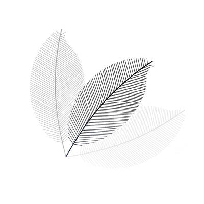 Monochrome Leaves Art Print