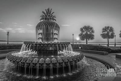 Photograph - Monochrome Pineapple by Dale Powell