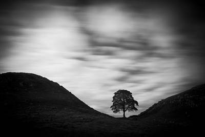 Kevin Costner Photograph - Monochrome Sycamore Gap by David Taylor