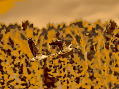 Keith Richards - Monochrome Toned Geese Flight 2 by Leif Sohlman