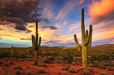 Photograph - Monsoon Desert Sunset  by Saija  Lehtonen