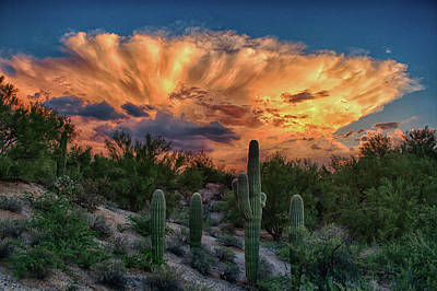 Photograph - Monsoon Sunset by Charlie Alolkoy