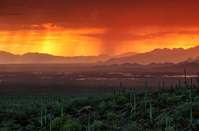 Halloween Movies - Monsoon Sunset by Evelyn Harrison