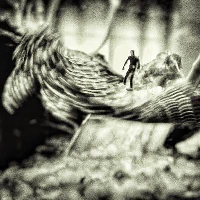 Animals Wall Art - Photograph - Monster Fish #water #frogman #dive by Rafa Rivas