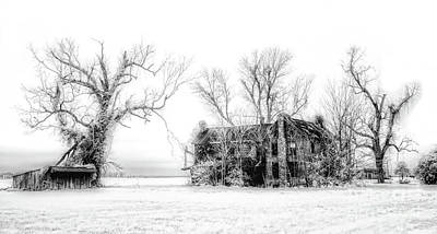 Photograph - Monster Manor On The Outer Banks by Dan Carmichael