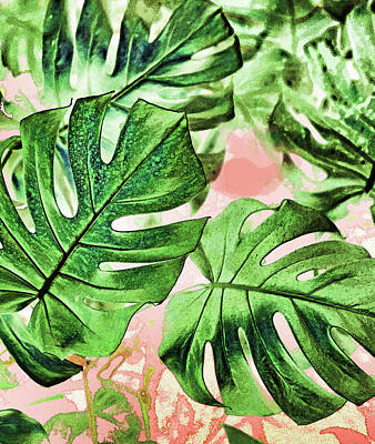 Digital Art - Monstera Beauty by Uma Gokhale