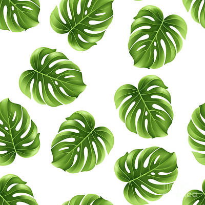 Photograph - Monstera Leaves Greenery Tropical Aloha Bohemian Decor by Sharon Mau