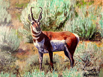 Painting - Montana Antelope Buck  by Ruanna Sion Shadd a'Dann'l Yoder
